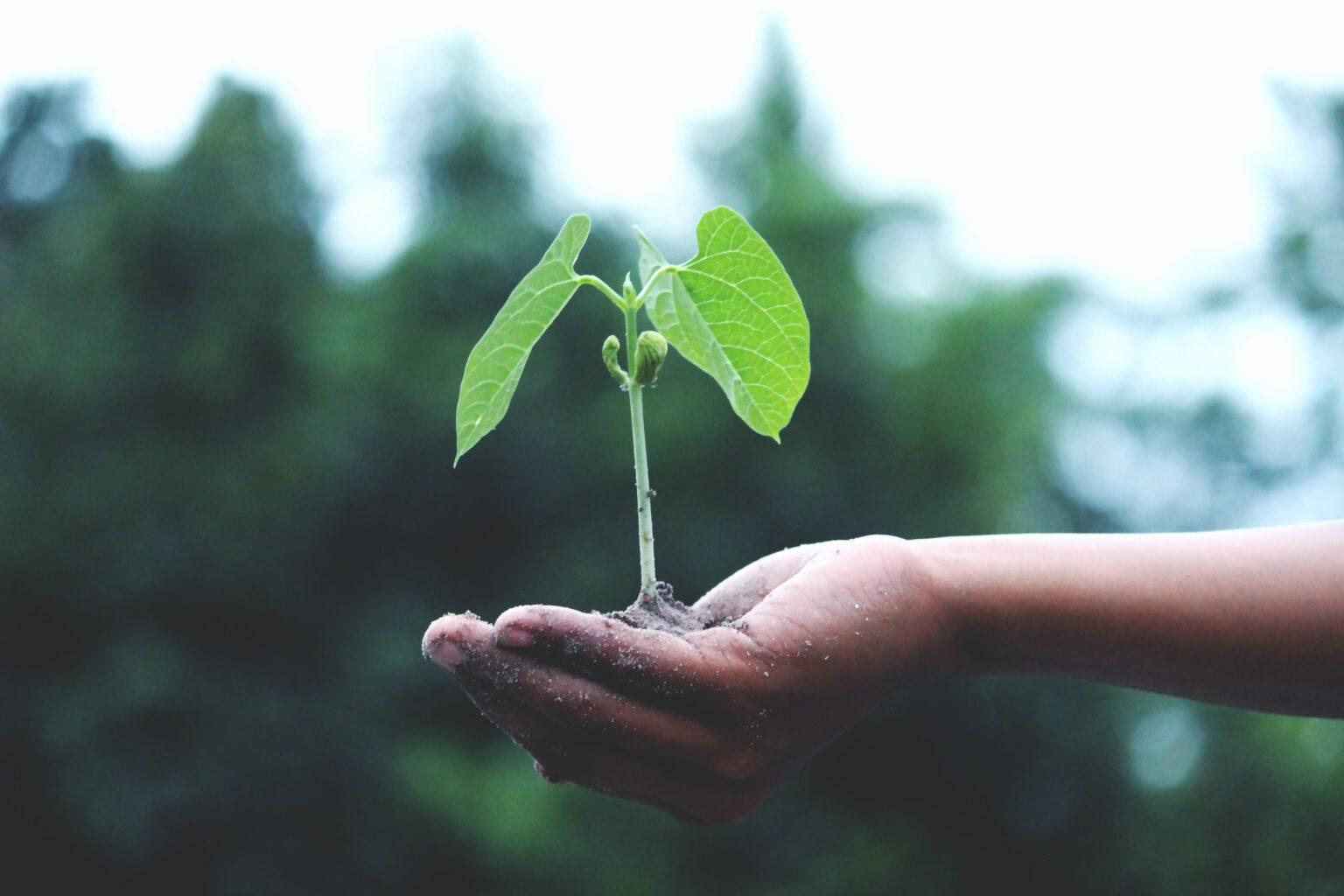 Yeşil Mutabakat Çalışma Grubu üyeleri toplandı