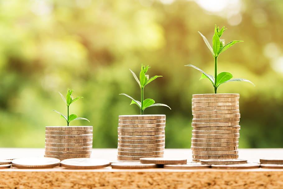 Orta Vadeli Program'da Yeşil Dönüşüm için 7 Hedef