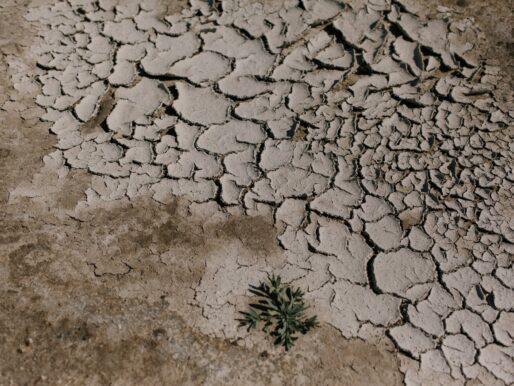 Meclis'in taslak raporuna göre Türkiye'yi bekleyen iklim senaryoları