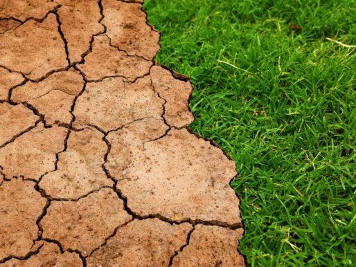 Paris İklim Anlaşması, TBMM'de kabul edildi