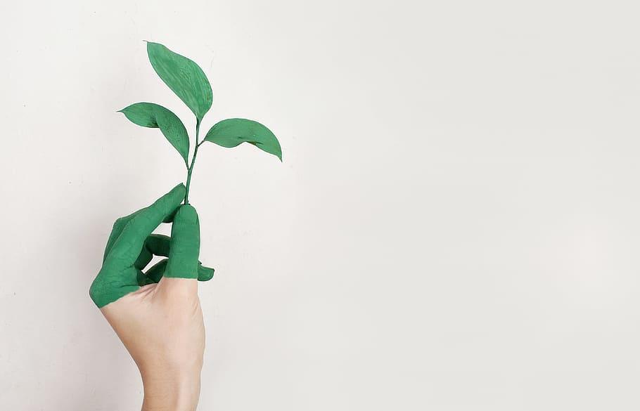 Yeşil dönüşüme neden ihtiyacımız var?